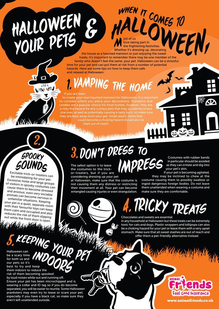 halloweenpets